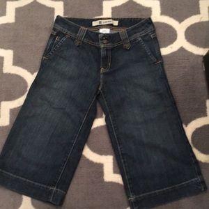 Gap Cropped Wide Legged Jeans
